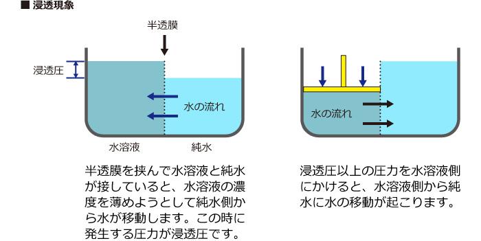 浸透現象と逆浸透現象