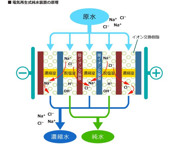 電気再生式純水装置の原理