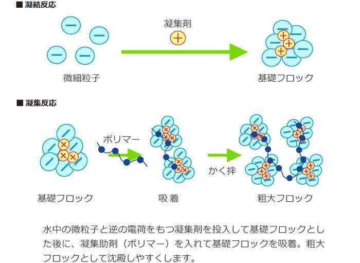 凝集反応と凝結反応の模式図