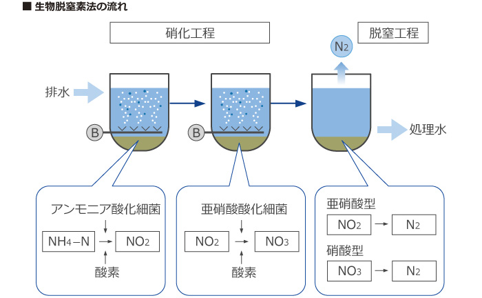 生物脱窒法の流れ